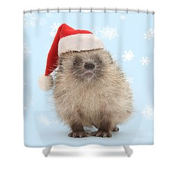 Santa's Prickly Pal Shower Curtain