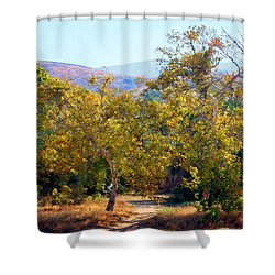 Shower Curtain featuring the photograph Santiago Creek Trail by Timothy Bulone