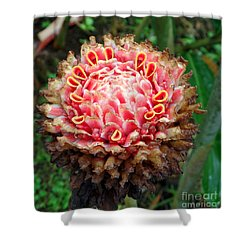Sao Tome Blosssom Shower Curtain