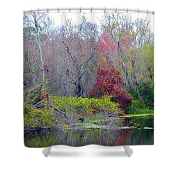 Shower Curtain featuring the photograph Sarasota Reflections by Madeline Ellis