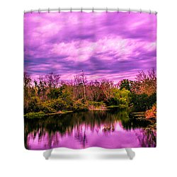 Shower Curtain featuring the photograph Sarasota Symphony 2 by Madeline Ellis