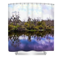 Shower Curtain featuring the photograph Sarasota Symphony  by Madeline Ellis