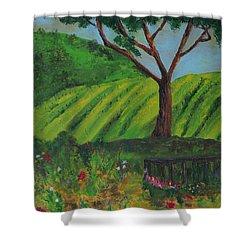 Saratoga Hills Shower Curtain by Haleh Mahbod