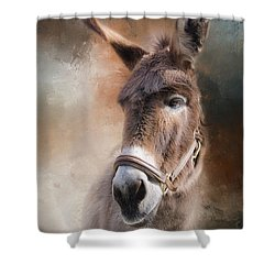 Shower Curtain featuring the photograph  Lil Sassafrass by Robin-Lee Vieira