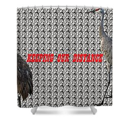 Sassy Sandhil Cranes Shower Curtain