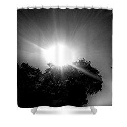 Saturday Sunshine On A Charleston Morning Shower Curtain