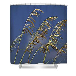 Shower Curtain featuring the photograph Saturday Sway by Michiale Schneider