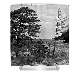 Saugatuck State Park In November Shower Curtain
