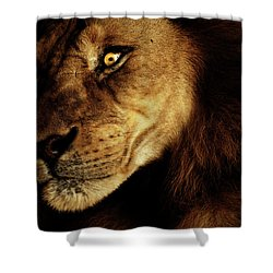 Savage Shower Curtain by Andrew Paranavitana