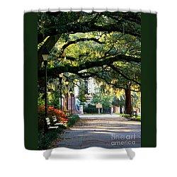 Savannah Park Sidewalk Shower Curtain