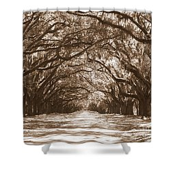 Savannah Sepia - Glorious Oaks Shower Curtain