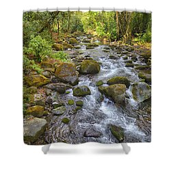 Savegre River - Costa Rica 3 Shower Curtain
