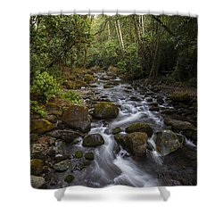 Savegre River - Costa Rica 4 Shower Curtain