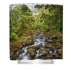 Savegre River - Costa Rica 5 Shower Curtain