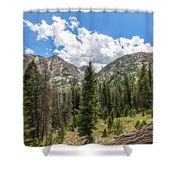 Sawtooth Wilderness 1 Shower Curtain