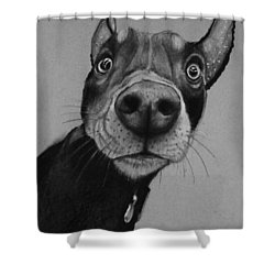 Say What?  Shower Curtain