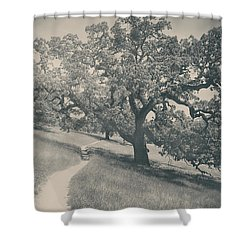 Say You Love Me Again Shower Curtain by Laurie Search