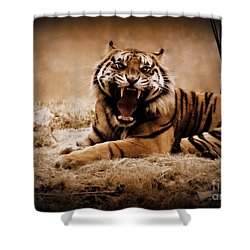 Shower Curtain featuring the photograph Saying Hello by Lisa L Silva