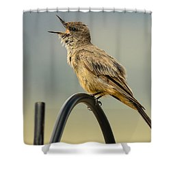 Say's Phoebe Singing Shower Curtain