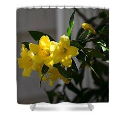 Yellow Jessamine Shower Curtains Pixels