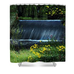 Scandinavia  Dam Shower Curtain by Judy  Johnson