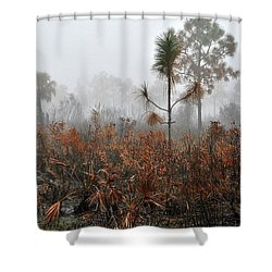 Scapes 2 13b Shower Curtain