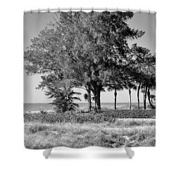 Scapes 2 16b Shower Curtain