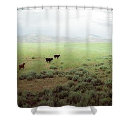 Scared Up Shower Curtain
