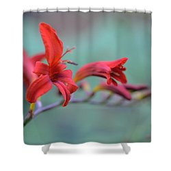 Scarlet Blooms Shower Curtain
