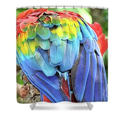 Scarlet Macaw Plumage Shower Curtain