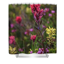 Shower Curtain featuring the photograph Scarlet Paintbrush by David Chandler