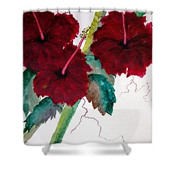 Scarlet Red Shower Curtain by Lil Taylor