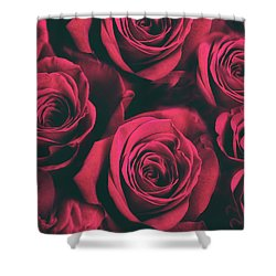 Shower Curtain featuring the photograph Scarlet Roses by Jessica Jenney