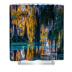 Scary Swamp In The Daytime Shower Curtain by Kimo Fernandez