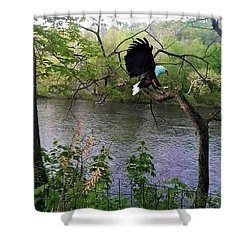 Scary Tree - Memories And Dreams Shower Curtain