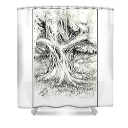 Scary Tree Shower Curtain by Ruth Renshaw