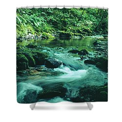 Scenic Exmoor Shower Curtain