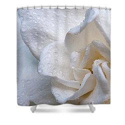 Scent Of A Gardenia Shower Curtain