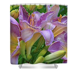 Scent Of A Lily Shower Curtain
