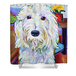 Schnoodle Shower Curtain by Robert Phelps