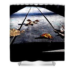 Schooled In Thought Shower Curtain
