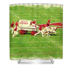 Schooner Celebration Shower Curtain