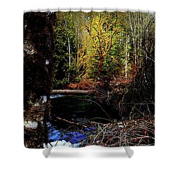 Scoggins Creek 3 Shower Curtain