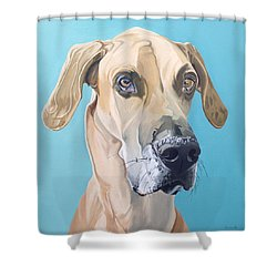 Scooby Shower Curtain