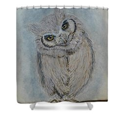Scops Owl Shower Curtain by Kelly Mills