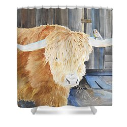 Scottish Highland And Friend Shower Curtain