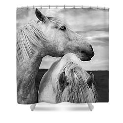 Scottish Horses Shower Curtain by Diane Diederich