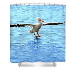 Screeching Halt Shower Curtain