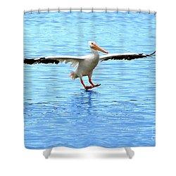 Screeching Halt Shower Curtain by Mariarosa Rockefeller