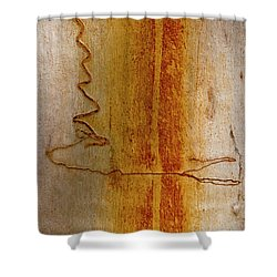 Shower Curtain featuring the photograph Scribbly Gum Bark by Werner Padarin